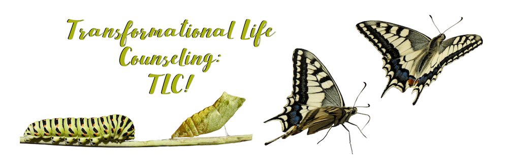Transformational Life Counseling